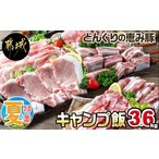 ふるさと納税 「どんぐりの恵み豚」キャンプ飯3.6kgセット_MJ-1110 宮崎県都城市