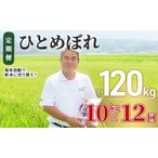 ふるさと納税 令和2年産 土づくり実証米 ひとめぼれ定期便(10kg×12回) 計120kg 精米 12ヵ月 12ヶ月 12カ月 12ケ月 秋田県にかほ市