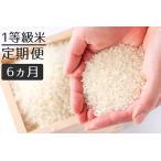 ふるさと納税 【定期便】1粒からこだわる1等級米 ヒノヒカリ 無洗米(5kg×6回) 福岡県小郡市