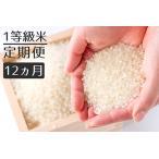 ふるさと納税 【定期便】1粒からこだわる1等級米 ヒノヒカリ 白米(5kg×6回) 福岡県小郡市