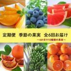 ふるさと納税 【定期便】定期便全6回 農園採れたて『季節の果実』をお届け 愛知県美浜町