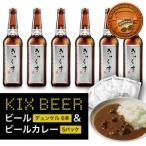 ふるさと納税 010B475 【期間限定】KIX BEER&黒ビールカレーセット(デュンケル) 大阪府泉佐野市