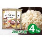 ふるさと納税 099H202 金芽ロウカット玄米4kg(2kg×2袋) 大阪府泉佐野市