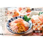 ふるさと納税 【定期便 全3回】北海道といえば!海鮮丼の具 60g×4個セット 北海道千歳市