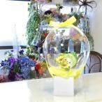 ふるさと納税 【3-97】フラワーバルーン ちゃちゃも 三重県松阪市