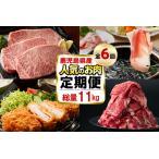 ふるさと納税 t011-001 【定期便・全6回】お肉のお楽しみ定期便2021<総量12kg超> 鹿児島県志布志市