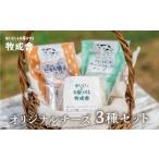 ふるさと納税 チーズを堪能!牧成舎オリジナルチーズ3種のセット[B0212] 岐阜県飛騨市