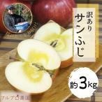 サンふじ 等級B (家庭用) 3kg 9〜15玉/送料無料 葉とらず 味極み りんご 減農薬 長野県産 産地直送