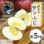 サンふじ 等級B (家庭用) 5kg 18〜25玉/送料無料 葉とらず 味極み りんご 減農薬 長野県産 産地直送