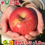 ご予約受付中 復興支援 家庭用 小玉 葉とらず りんご 約2キロ およそ7〜11玉 2kg 等級B 減農薬 長野県産 産地直送