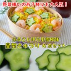 きゅうり 星型 ハート型 子供 野菜嫌い 克服 お弁当 誕生日 料理 インスタ 各2本 4本 セット