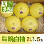 熊本八代産の晩白柚(バンペイユ・ばんぺいゆ)2Lサイズ・5玉入り