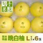 熊本八代産の晩白柚(バンペイユ・ばんぺいゆ)Lサイズ・6玉入り