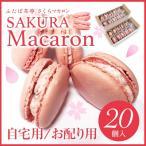 【送料無料】 季節限定さくらマカロン (20個)(お配り/自宅用) 桜 お花見