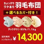 羽毛布団 福袋 シングル ポーランド産ダックダウン85% 1.0kg 日本製 羽毛掛け布団 色柄おまかせ 選べる掛カバー付きセット