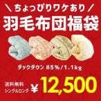 羽毛布団 福袋 シングル ポーランド産ダックダウン85% 1.0kg 日本製 羽毛掛け布団 色柄おまかせ エクセルゴールドラベル