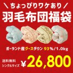 羽毛布団 福袋 シングル ポーランド産グースダウン93% 1.0kg 日本製 羽毛掛け布団 色柄おまかせ ロイヤルゴールドラベル