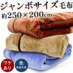 訳あり品 毛布 キング 200×250cm 衿付き2枚合わせ マイヤー毛布 色おまかせ ビッグサイズ 洗えるブランケット