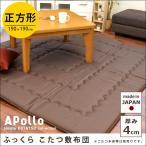 こたつ敷き布団 正方形 2畳 190×190cm 日本製 極厚ラグ 厚み約4cm 無地カラー ボリューム マット カーペット
