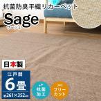 カーペット 6畳 江戸間 261×352cm 日本製 抗菌 防臭 平織り フリーカット 絨毯 サージュ