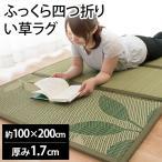 い草ユニット畳 一畳 約85×170×厚み1cm 折りたたみ 日本製 薄手 防音 防ダニ 防カビ 置き畳 蒼