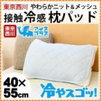 接触冷感 ひんやり枕パッド 東京西川 アイスプラス 冷やスゴッ 夏 ニット&裏メッシュ枕カバー 洗えるピローパッド