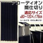 のれん おしゃれ 夏用 洋室 間仕切り ロング丈 黒 カーテン 暖簾