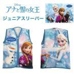 アナと雪の女王 マイクロスリーパー 35X50cm  Disney FROZEN ディズニーキャラクター アイススケート