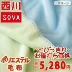 ショッピング西川 西川 毛布 ダブル フリースブランケット リバーシブル 洗える SV00Dダブル