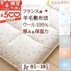 敷き布団 ジュニア 日本製 羊毛 敷きふとん ハリネズミ かわいい 綿100% Jrサイズ 敷布団  85×185cm