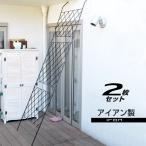グリーンカーテン 2個組 セット ガーデニング フェンス アイアン ベランダ 目隠し バラ 金網 日よけ たてす 洋風たてす すだれ ラティス カーテン