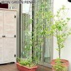 緑のカーテン 日除け 目隠し グリーンフェンス 送料無料 トレリス ラティス フェンス 日よけ リーフ ベランダ ガーデン ガーデニング グリーンカーテン 壁面緑化