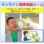 オンライン飼育相談ルーム【初めて体験コース】20分 x1回 = ¥1,000