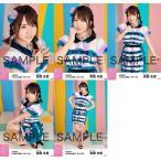 高橋朱里 生写真 AKB48 2017年09月 個別 「ハイテンション ファー」衣装 5種コンプ
