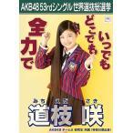 道枝咲 生写真 AKB48 Teacher Teacher 劇場盤特典