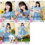 向井地美音 生写真 AKB48 2018年08月 vol.1 個別 5種