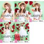 加藤玲奈 生写真 AKB48 2019年04月 vol.1 個別 5種コ