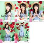 村山彩希 生写真 AKB48 2019年04月 vol.1 個別 5種コ