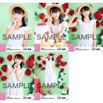 山内瑞葵 生写真 AKB48 2019年04月 vol.1 個別 5種コ