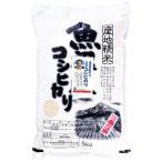 桑原健太郎さんのコシヒカリ(金賞受賞米) 3kg