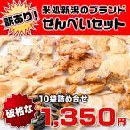 【送料込み】訳あり!米どころ新潟の超一 流メーカーのおまかせ10種類こわれせんべい!