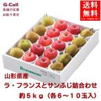 山形産ラ・フランスとサンふじ詰合わせ 約5kg(各6〜10玉入) 送料無料(一部地域を除く) ジェイエイてんどうフーズ ラフランス りんご 果物ギフト