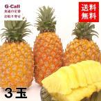 送料無料 10%OFFキャンペーン 台湾を応援しよう!台湾産樹熟パイナップル 3玉約3.5kg〜4kg 果物 フルーツ パイン 甘い 高糖度 絶品 支援 期間限定 お取り寄せ
