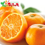 和歌山県産 有田みかん(7.5kg) 2020 お歳暮 ギフト 贈り物 贈答 お礼 お返し みかん 果物 フルーツ グルメ 送料無料 お取り寄せグルメ