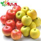 青森県産 サンふじ&王林(5kg) 2020 お歳暮 ギフト 贈り物 贈答 お礼 お返し りんご リンゴ 果物 フルーツ グルメ 送料無料 お取り寄せグルメ