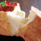 八天堂 とろける食パン ギフト 贈り物 贈答 お祝い お礼 お返し プレゼント 内祝い 食パン パン プレーン チョコ スイーツ 北海道 送料無料 お取り寄せ