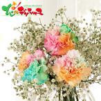 虹色マザーズブーケ 2021 母の日 メッセージカード ギフト プレゼント 遅れてごめんね対応 花束 ブーケ かすみそう ドライフラワー 人気 贈り物 お取り寄せ