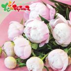 シャクヤクの花束 2021 母の日 メッセージカード ギフト プレゼント 母の日ギフト 遅れてごめんね対応 花 花束 ブーケ アレンジメント 人気 贈り物 お取り寄せ