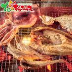 【お中元ギフト】キョクイチ 氷温乾燥一夜干しセット 惣菜 水産 海鮮 干物 詰め合わせ 御中元 ギフト 贈り物 お礼 お返し 人気 北海道グルメ お取り寄せ