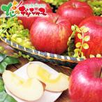 JAよいち JAよいち りんご(ふじ) 3kg 2020 お歳暮 年越し お正月 お年賀 ギフト 贈り物 贈答 お礼 お返し りんご リンゴ 果物 北海道 送料無料 お取り寄せグルメ